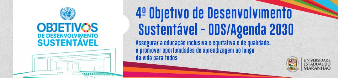 slide-4o-Objetivo-de-Desenvolvimento